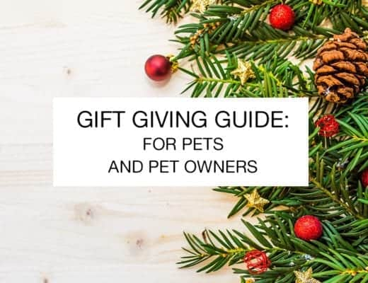 gift-giving-guide-for-pets